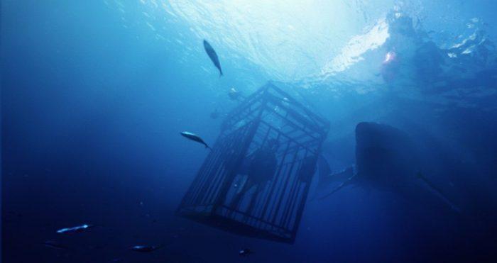 47-meters-down1-1024x544